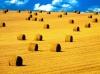 Tapety na plochu - krajina
