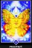 výklad karet - osho zen tarot - Procitnutí
