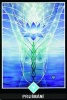 výklad karet - osho zen tarot - Přijímání