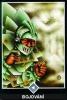 výklad karet - osho zen tarot - Bojování