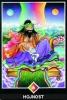 výklad karet - osho zen tarot - Hojnost
