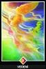 výklad karet - osho zen tarot - Vedení